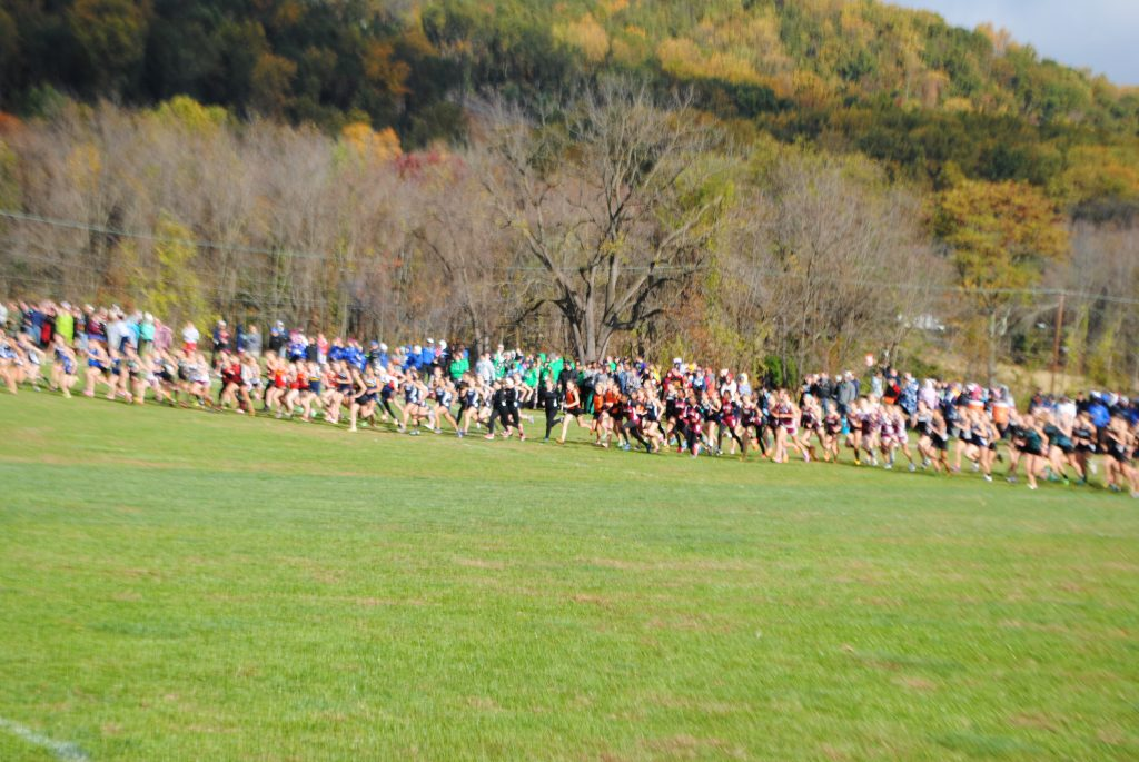 District1XC2013 005