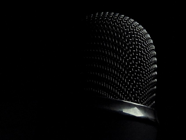 microphone-337747_640